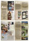 2015: Four-Page Advert for US Journal